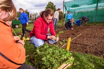 Die Arenenberger Gartenwelt lädt Besucher mit und ohne grünen Daumen zum Gärtnern ein
