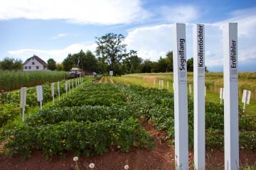 Sortengarten als Openair-Schulzimmer für angehende Landwirte