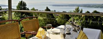 Blick über die grüne Umgebung des Parkhotel St. Leonhard hinab auf den Bodensee