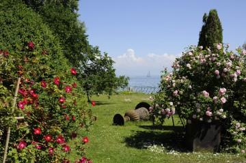 Stiegeler Park Konstanz im Sommer