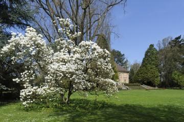 Stiegeler Park mit Blick auf Villa