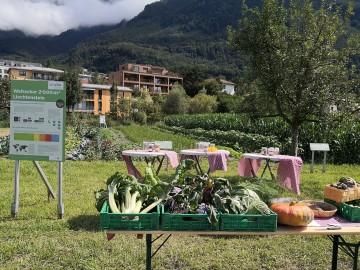 Ernährungsfeld Vaduz