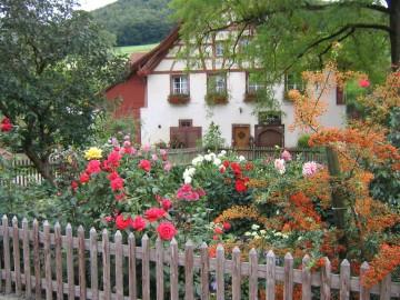 Gartenpfad Osterfingen