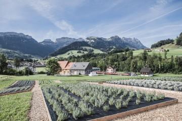 Neu dabei im grünen Netzwerk: Das Kräuterhaus Appenzell