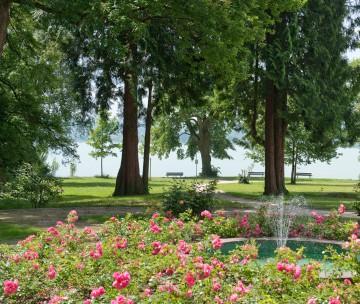 Rosenau: Parkidyll an der Konstanzer Seepromenade