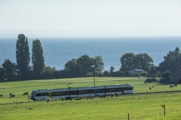 Der Thurbo-Zug mit Bodenseeblick