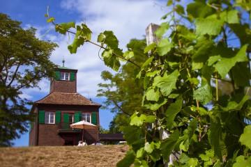 Hochwart auf der Insel Reichenau