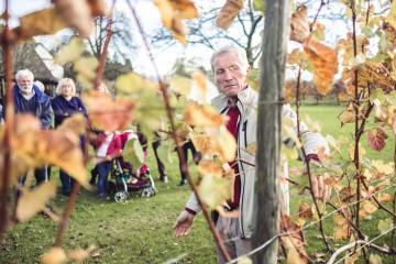 Beim Winzer-Hopping den goldenen Herbst auskosten
