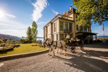 Kutschfahrten rund um das schönste Schloss am Bodensee