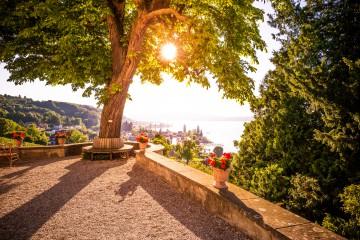 Einer der schönsten Orte am Bodensee ist die Aussichtsterrasse vor dem Napoleonschloss