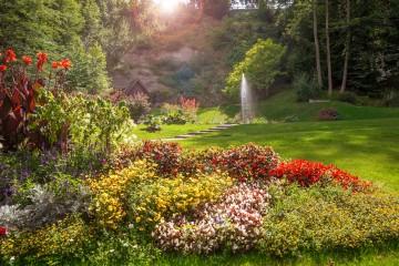 Arenenberger Parkträume