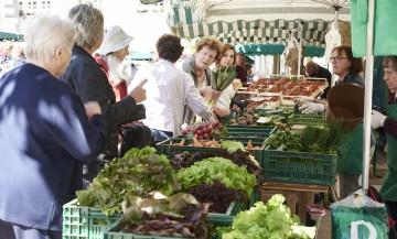 Radolfzeller Marktgang