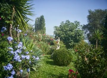 Geöffnete Privatgärten und Parks am Bodensee