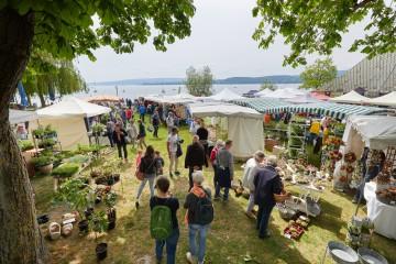 Kräutermarkt in Radolfzell