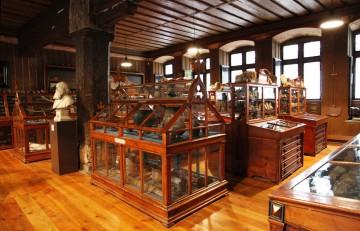 Ein Museum im Museum: Der Leinersaal in Konstanz