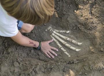 Archäologische Drachenspuren