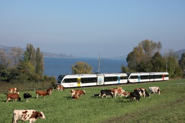 Mit dem Zug am Bodensee entlang
