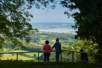 Aussicht vom Homburg-Steig