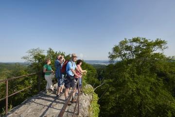 Panoramablick von der Ruine Homburg