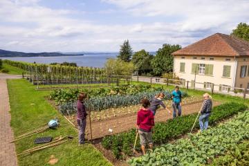 Gärtnern lernen im Bildungs- und Beratungszentrum Arenenberg