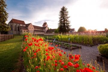 Hortulus-Kräutergarten auf der Reichenau