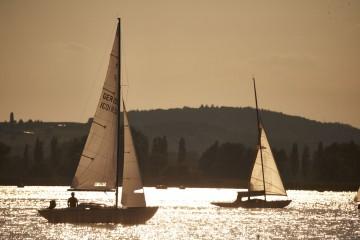 Segelboote bei Radolfzell