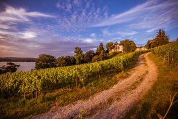 Das Wandern ist des Müller-Thurgaus Lust