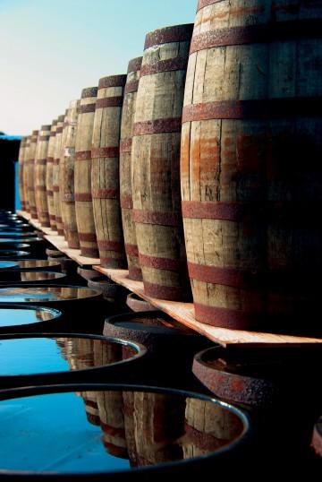 Unterwegs im Land der Lochs und des Whiskeys